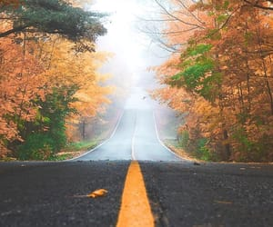 fall, leafs, and road image