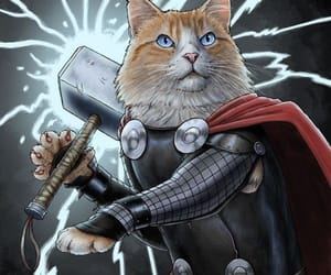 cats, felinos, and Marvel image