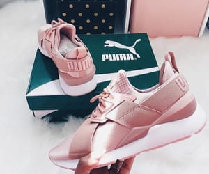 puma and tennis image