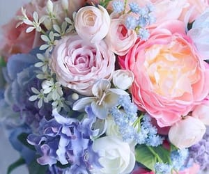 flowers, beauty, and wallpaper image