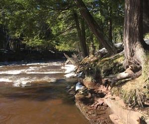 river, rapids, and shoreline image