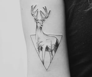amazing, black and white, and deer image