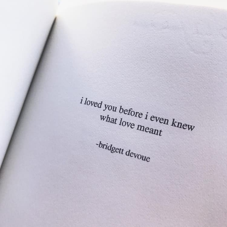 love, quotes, and books image