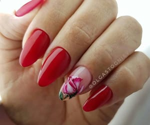 flower, nails, and red image