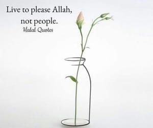 muslim, allah, and islam image