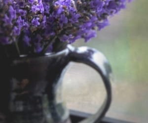 jug and lavender image