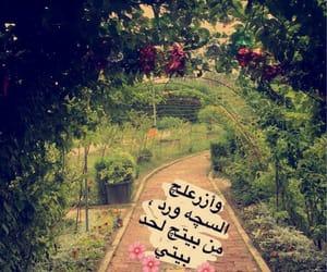 beautiful, طريق, and الجمال image