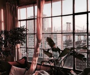 city, window, and plants image