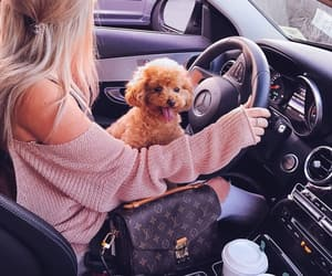 car, fluffy, and mercedes image
