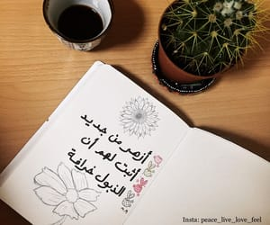 arabic, quote, and instagram image