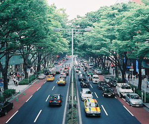 city and trees image