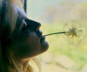 60s, dandelion, and sharon tate image