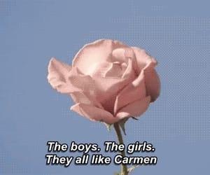 lana del rey, Carmen, and rose image