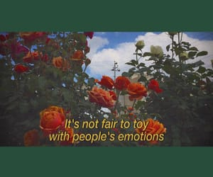 aesthetics, feelings, and flower image