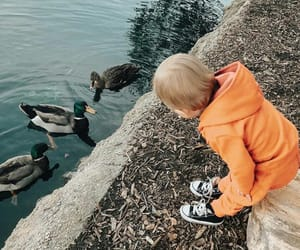 baby, boy, and duck image