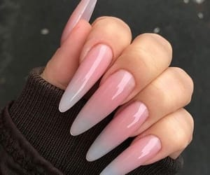 paws, nail goals, and style inspiration image