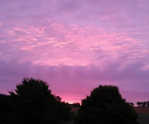 photography, pink, and purple image