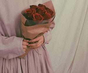 roses, aesthetic, and clothes image
