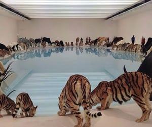 animals, wild, and art image