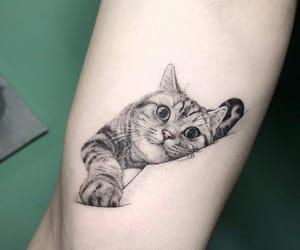 tattoo, beautiful, and cat image