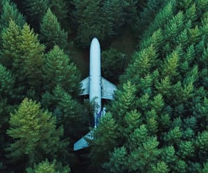 airplane, forest, and woods image