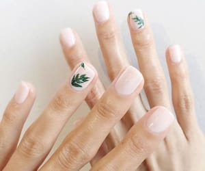 nail, Nude, and plants image