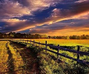 farm, farmland, and fields image