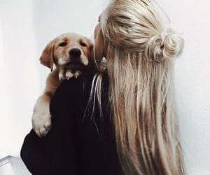 black sweater, dog, and cute image