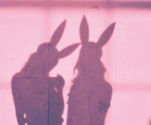 girl, bunny, and shadow image