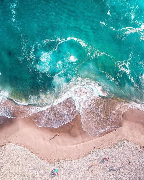 beach, sea, and vacation image