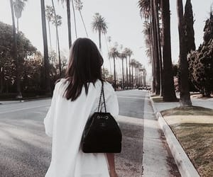 clothes, palm trees, and white image