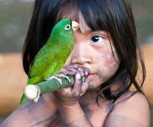 cute, adorable, and guarani image