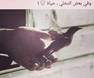 حرّية, حياة, and وحدة image