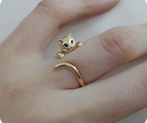 adorable, cat, and gold image