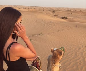 camel, desert, and goals image