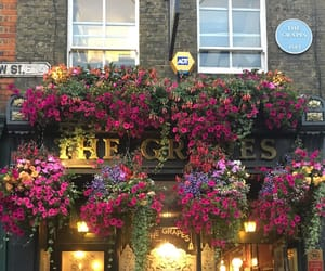 destinations, england, and london image