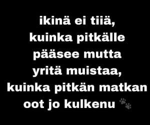 finnish, suomi, and vittu image