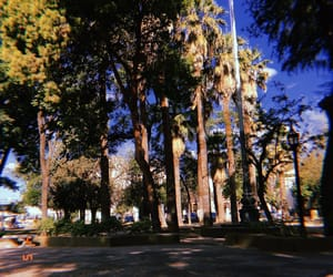 argentina, green, and place image