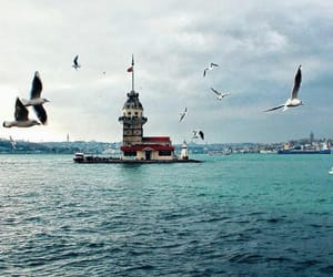 beauty, istanbul, and turkey image