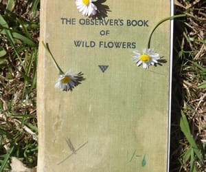 aesthetic, book, and floral image