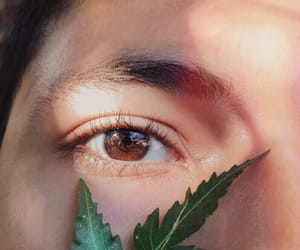 brown eyes, photography, and eyes image