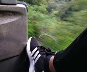 adidas, amore, and bus image