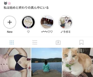 follow, like, and instagram image