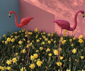 flamingo, flowers, and pastel image