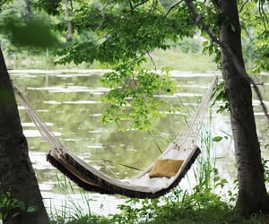 hammock and summer image
