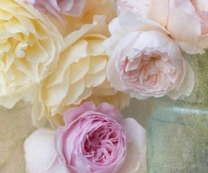 flowers, pastel, and dreamy image