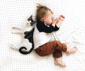 baby, cat, and photography image