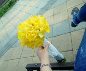 flower, friend, and gift image