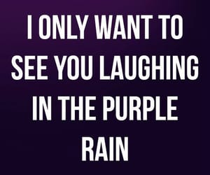 quotes, Lyrics, and purple image