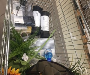 plants, shopping, and aesthetic image